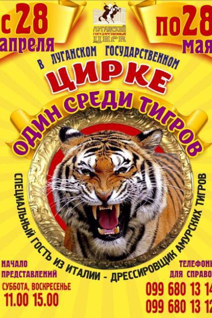 представление один среди тигров